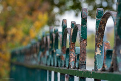 Rusty Cage (sdupimages) Tags: paris bokeh fence cloture rouille rusty details fall automne autumne street rue dof hff fenced friday
