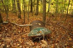 IMG_6316 (sjj62) Tags: fishcreekwi doorcountywi fall autumn woods doorcounty fishcreek 40d