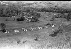 Album2film127-005 (Stichting Papua Erfgoed) Tags: stichtingpapuaerfgoed pace