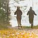 morning run in Vesileppis