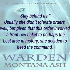 From #TABB #PimpPost Warden Book one in the Elemental Paladins series (sbproductionsteaseraddict) Tags: book promotions indie authors readers