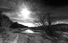 RUYA DEVAM EDİYOR (uzaktanbakanadam) Tags: wb landscape sun tree clouds road ngc
