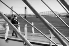 Slanting Lines (Ian Sane) Tags: ian sane images slantinglines vancouver washington state cable suspended pier columbia river bridge waterfront park blackwhite monochrome candid street photography blur canon eos 5ds r camera ef50mm f14 usm lens monochromemonday