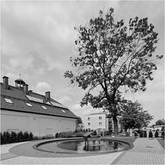 Piano leaks / Fortepian przecieka (Piotr Skiba) Tags: piano fountain koszęcin śląskie poland pl piotrskiba tree film bw monochrome water eos rolleiortho25