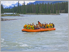 Canada - Alberta - Jasper _ Enjoying a Float on the Athabasca River. (Bill E2011) Tags: canada alberta jasper float holiday floating scenic animals raft rafting