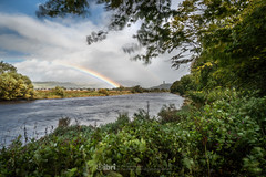 Storm Ali - 19 Sep 2018 - 55 (ibriphotos) Tags: stormali rainbow wallacemonument forthvalleycollege doublerainbow stirling riverforth weather storm tree