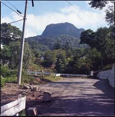 (✞bens▲n) Tags: hasselblad 500cm kodak porta 400 carl zeiss 80mm f28 film analogue landscape mountain road japan gunma