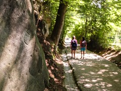 Schwarzsee / Ref.04360 (FRIBOURG REGION) Tags: fribourgregion suisse schwarzsee wandern schweiz switzerland outdoor randonnée nature fribourgrégion voralpen prealps préalpes natur schwarzenburg heitenried stantoni kantonfreiburg ch hiking viajacobi