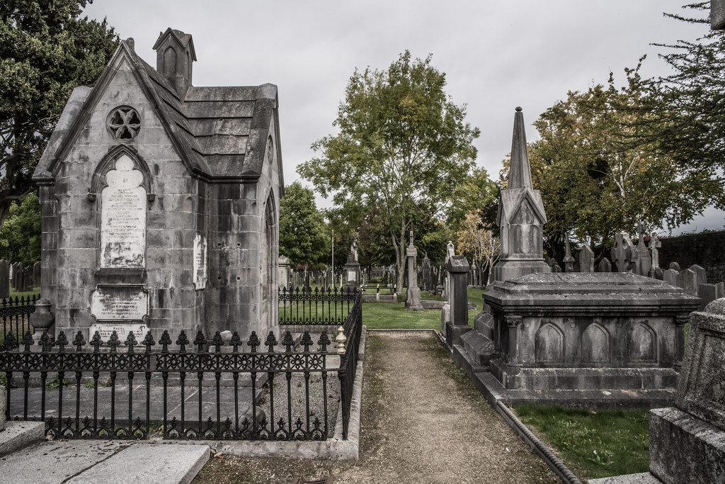 SEPTEMBER 2018 VISIT TO GLASNEVIN CEMETERY [ I USED A BATIS 25mm LENS AND I EXPERIMENTED WITH CAPTURE ONE]-144859