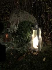 """""""Ljuset lyser i mörkret"""" (explore) (hildur_76) Tags: fs181104 budskap fotosondag"""