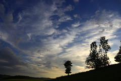 rc_nature_15 (R.C. Reshel) Tags: natur landschaft umwelt outdoor bäume hecke baumhecke pferdekoppel abend sommer sommerabend himmel abendhimmel sommerhimmel