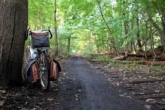 Between mud and railroad ties (Shu-Sin) Tags: velo shusin bicycle bike randonneur randonneuse rando 650b touring ny van cortland park bronx nyc mud path railroad ties rail trail