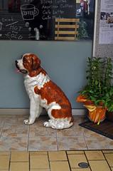 "Ceramic St. Bernard outside the ""Apricot Bakery & Cafe"" Yamaguchi  山口 (Anaguma) Tags: japan chugoku yamaguchi pottery dog"