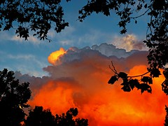 (Christopoulos) Tags: sky clouds trees silhouttes storms stormclouds sunset