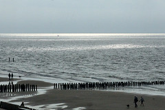 DSC04252 (imanh) Tags: strand zee imanh iman heijboer beach sea