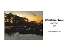 "Chincoteague Sunset • <a style=""font-size:0.8em;"" href=""https://www.flickr.com/photos/124378531@N04/45312919502/"" target=""_blank"">View on Flickr</a>"
