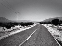 """Into The Fog"" (bradhodges09) Tags: newmexicophotography newmexico mysterious blackandwhitephotography blackandwhite mountains snow ruralroads ruralhighways foggymorning foggy fog"