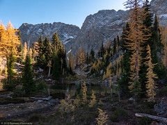 Tarn II (Ramona H) Tags: alpinelarch bluelake cascades larixlyalllii northcascades tarnlooptrail hiking larch route20 tarn trail trees