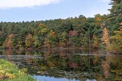 ashleyreservoir2018-137 (gtxjimmy) Tags: ashleyreservoir nikond7500 nikon d7500 newengland holyoke massachusetts autumn fall watersupply reflections reflection hdr
