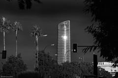 The sunlight on the skyscraper (ricardocarmonafdez) Tags: arquitectura architecture ciudad city cityscape building edificio rascacielos skyscraper sunlight monocromo monochrome blackandwhite bn nikon d850