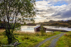Boathouse by the fjord (Petra S photography) Tags: guvåg bø norge norway nordnorwegen northernnorway nordland nordlandfylke boathouse fjord beautifullight eveninglight haugsnes