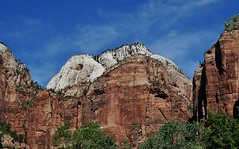 View Inside Zion National Park (Susan Roehl) Tags: •nationalparkstour2017 zionnationalpark springdale utah usa landscape rockformations sueroehl panasonic lumixdmcgh4 12x35mmlens handheld canyon outdoors uniquegeology 229squaremilesinsize 15mileslong 8726feethighestelevation mountains trees coth5 ngc npc