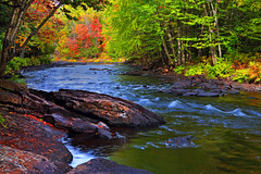 Autumn on the Oxtongue River (ashockenberry) Tags: river nature naturephotography northern natural wild wilderness reserve travel tourism vacation ontarionature beautiful forest oxtongue ashleyhockenberryphotography autumn
