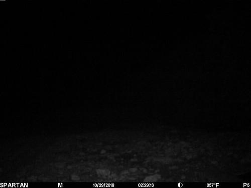 2018-10-29 02:29:13 - Crystal Creek 2