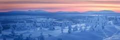 Frozen Planet (saussedavid) Tags: frozen arctic arctique nature landscape paysage landschaft winter hiver composition forest sunset colors panorama scenic view finland lapland laponie mountain montagne
