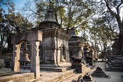 Pashupatinath (rfabregat) Tags: nepal nepalese temple nepali asia asian kathmandu katmandu pashupatinath hindu hinduism hindutemple travel travelphotography nikond750 d750 nikon