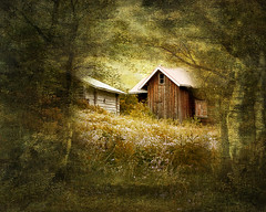 Hidden (BirgittaSjostedt- away for a while.) Tags: cottage house forest fairytale tale bookcover texture paint painting romantic birgittasjostedt