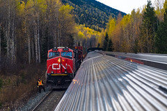 Meet (jameshouse473) Tags: cn cnr canadian national canada british columbia bc fall autumn rocky mountains rockies via rail railway meet passenger