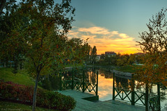 An autumn sunset (Anthony P.26) Tags: category eskisehir hdr kanlikavakpark landscape places sunset turkey evening travelphotography landscapephotography citypark skyline city park river water watercourse reflections glow sunlight sky trees canon70d canon canon1585mm outdoor grass riverbank tree