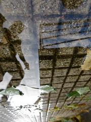 Urban Abyss (andressolo) Tags: city town reflection reflections reflejos reflejo charco pond puddle human people person shadow ground pavement water agua street ciudad acera