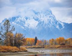 Mount Moran in Fall - Wyoming (petechar) Tags: charlesrpeterson petechar oxbowbend grandtetonnationalpark wyoming panasonicgh5 panasonicleica100400mm water birds mountmoran mountains tetons
