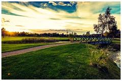Passagen (bengtson.jonas) Tags: vatten water canon göteborg gothenburg resort jörgen park autumn höst solnedgång sunset sun sankt gräs himmel sky weed bridge bro fotosondag fs181021