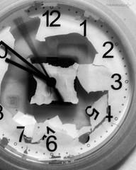 """""""POSSIAMO VEDERCI ALLE 5, HO UN BUCO (LO SPAZIO E IL TEMPO)"""" -70 #artcontemporary #urban #photography #photographer #artphotography#fotografia#photoart#photo #city #arte #artecontemporanea #arteconcettuale #conceptual_art_gallery#artgallery  #paolomariane (paolomarianelli) Tags: clock city paolomarianelli artphotography artwork watch urbexphotography arteconcettuale urbex conceptualartgallery orologio tempoespazio artistcommunity arte artecontemporanea artcontemporary photography artist urban photo artgallery relativity photoart urbexphot fotografia relatività photographer curator five"""