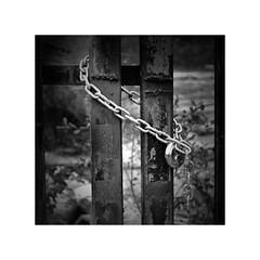 Safe or imprisoned ? (CJS*64) Tags: dslr d7000 nikon nikkorlens 24mm85mmlens nikond7000 cjs64 craigsunter cjs blackwhite bw blackandwhite mono monochrome chain lock gate