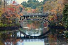 Autumnal Bridge (Read2me) Tags: autumn water leaves pree river bridge reflection circle shape perpetualchallengewinner gamewinner thechallengefactorywinner gamex2 friendlychallenges challengeyouwinner challengeclubwinner agcgwinner