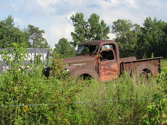 Rusty Old Pickup Truck---Cullman County, Al. (bamaboy1941) Tags: ruralamerica theamericanpickuptruck abandonedplacesandthings pickuptruck ruralscenes cullmancountyal