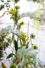 FOTO_Patio del reloj Flora_06 (Página oficial de la Diputación de Córdoba) Tags: diputación de córdoba patio del reloj exposición flora festival plantas flores jardín