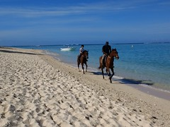 Horse riding (lesleydugmore) Tags: ocean blue sky boat indianocean lemorne mauritius horses sand