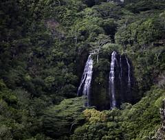 Waialua Canyon ([CamCam]) Tags: hawaii waialua waterfall fall fals falls