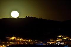 LA LUNA (alfredo2057) Tags: alfredo arbol atalaya senderismo noche nikon luz largaexposicion luna navarra nocturna pueblo peralta otoño monte cielo