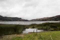 Laguna de Pacucha (Luis Fer Barriales) Tags: lagunadepacucha laguna lagoon lagon lagoa paisaje landscape paysage paisagem naturaleza nature natureza pacucha andahuaylas apurimac peru
