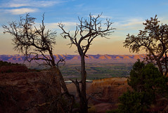 Evening, Colorado National Monument, Colorado (klauslang99) Tags: klauslang nature naturalworld northamerica national colorado monument evening sunset mountains trees