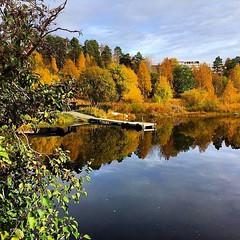 #Dagensfoto #höstens vackra #färger #Vilhelmina #Södralappland 😊 (svenskvagguide) Tags: dagensfoto höstens färger vilhelmina södralappland