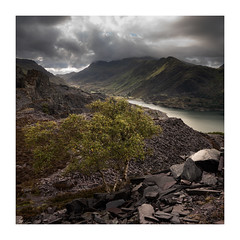 Whitton's View (Andi Campbell-Jones) Tags: andi andicampbelljonescom campbelljones photography dinorwig quarry snowdon snowdonia national park slate tree mountains wales llanberis clouds
