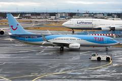 D-ASUN Boeing 737-8BK (Irish251) Tags: eddf fra frankfurt main airport germany boeing