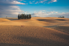 wandering through Tuscany (Smo_Q) Tags: tuscany hills cypresses sunset pentaxk3ii italy